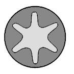 Set surub chiulasa VICTOR REINZ 14-32019-02